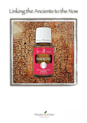 Photograph - Frankincense by Cheryl McClure