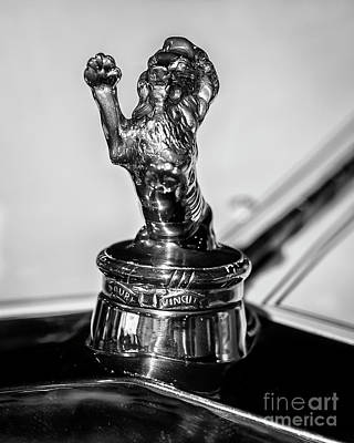 Photograph - Franklin Hood Ornament by Dennis Hedberg