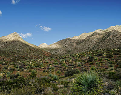 Photograph - Franklin Mountains Desertscape 2 by Allen Sheffield