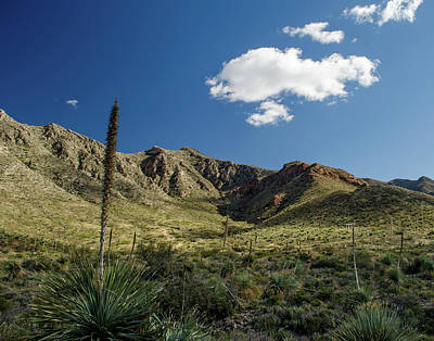 Photograph - Franklin Mountains Ready To Climb by Allen Sheffield