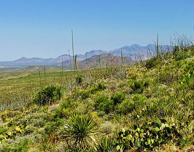 Photograph - Franklin Mountains State Park Facing North by Allen Sheffield