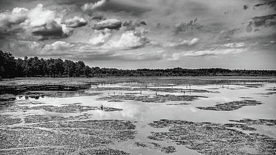 Pine Barrens Photograph - Franklin Parker Preserve Landscape by Louis Dallara