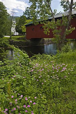 Photograph - Frann's Vermont by Dan McGeorge