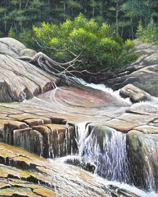 Tidal Basin Painting - Frazer Falls by Paul Breeden
