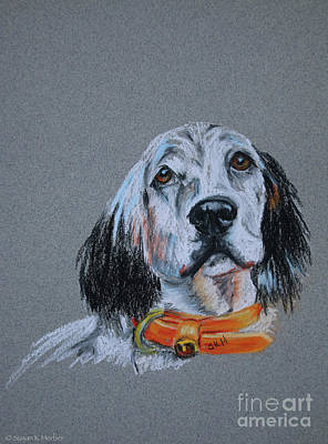 Pastel - Fred by Susan Herber