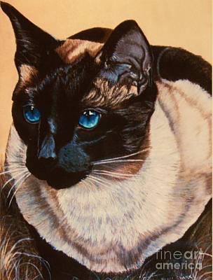 Siamese Painting - Freddy by Heidi Parmelee-Pratt