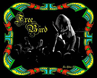 Photograph - Free Bird by Ben Upham