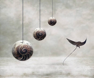 Surrealism Royalty-Free and Rights-Managed Images - Free by Jacky Gerritsen
