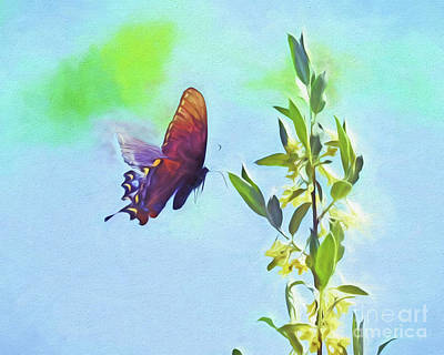 Photograph - Free To Fly - Butterfly In Flight by Kerri Farley