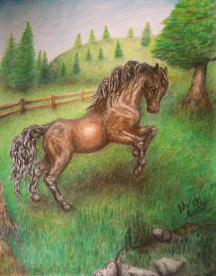 Bay Horse Drawing - Free To Run by Sherry Bunker