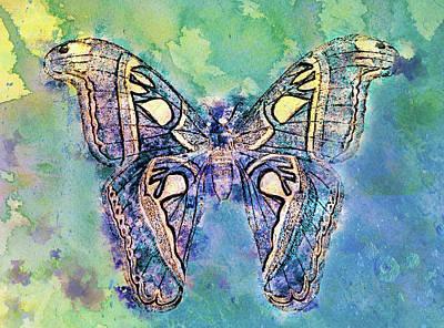 Freedom Mixed Media - Freedom Butterfly Wall Art by Georgiana Romanovna