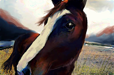 Horse Painting - Freedom Cant Be Bridled  by Paul Sutcliffe