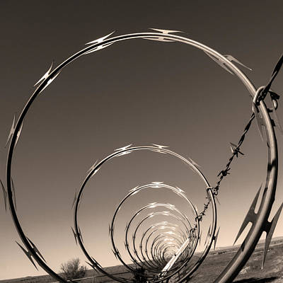 Barbed Wire Fences Photograph - Freedom by Don Spenner