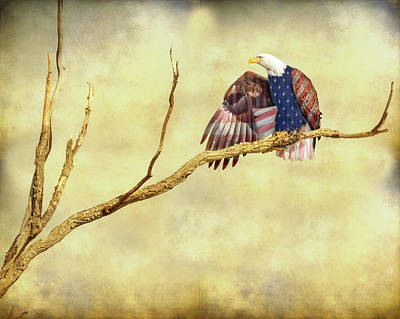 Patriotic Photograph - Freedom by James BO Insogna
