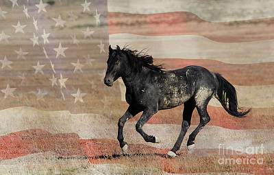 Photograph - Freedom  by Nicole Markmann Nelson