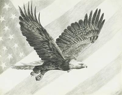 Eagles In Flight Drawing - Freedom by Stephanie Yates