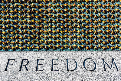 Photograph - Freedom by Steven Green