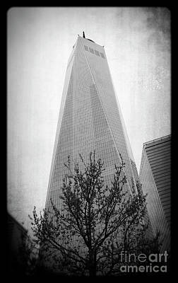 Photograph - Freedom Tower 2 by Paul Cammarata