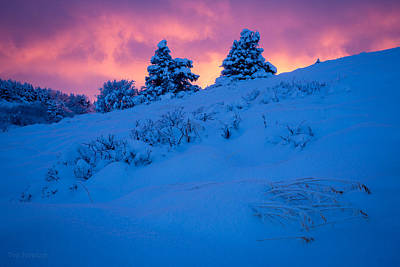 Photograph - Freezing Fire by Tim Newton