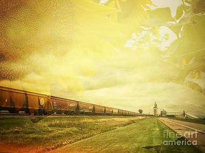 Photograph - Freight Train And Sunflowers Double Exposure by Iryna Liveoak