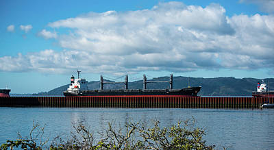 Photograph - Freighter Parade And Sea Wall by Tom Cochran