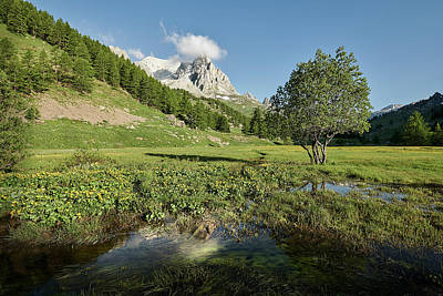 Photograph - French Alps Valley by Jon Glaser