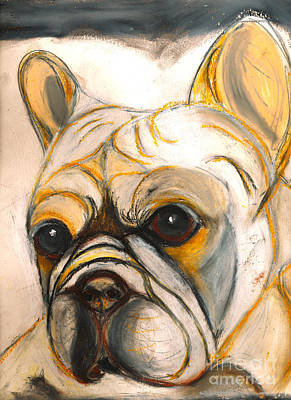 Ania Painting - French Bulldog Drawing by Ania M Milo