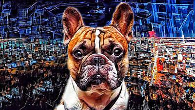 French Bulldog In Montreal Original