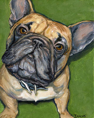 French Bulldog Looking Up On Green Art Print