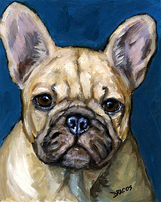 Frenchie Painting - French Bulldog On Teal by Dottie Dracos