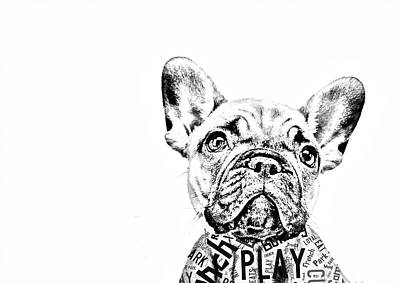 French Bulldog Portrait Print by Marvin Blaine