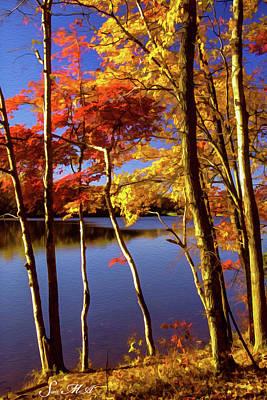 Photograph - French Creek 1027 by Scott McAllister
