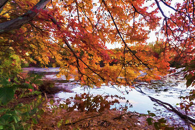 Photograph - French Creek 15-107 by Scott McAllister