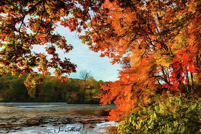 Photograph - French Creek 15-141 by Scott McAllister
