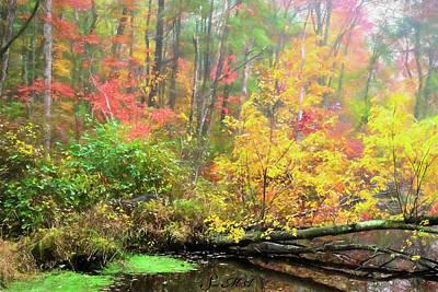 Photograph - French Creek 17-122 by Scott McAllister