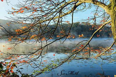 Photograph - French Creek 17-222 by Scott McAllister