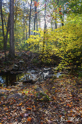 Photograph - French Creek 17-230 by Scott McAllister