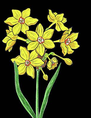Painting - French Daffodil Watercolour  by Irina Sztukowski