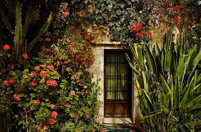 Photograph - French Greenhouse At Dusk by Joe Bonita