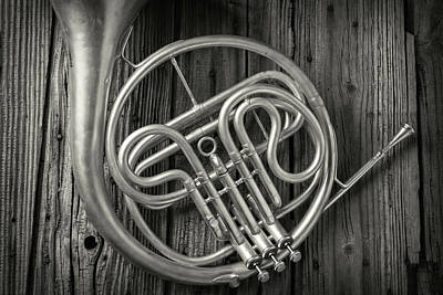 French Horn Photograph - French Horn 2 by Garry Gay