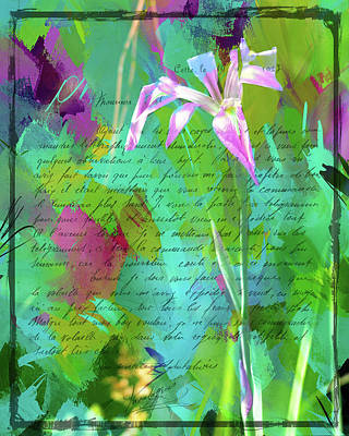 Photograph - French Impressionist Iris by Carla Parris