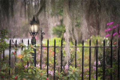 Photograph - French Iron, Spanish Moss, Southern Charm by Kim Carpentier