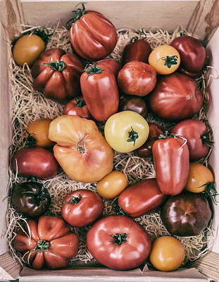 Country Cottage Photograph - French Market Finds - Tomatoes by Georgia Fowler