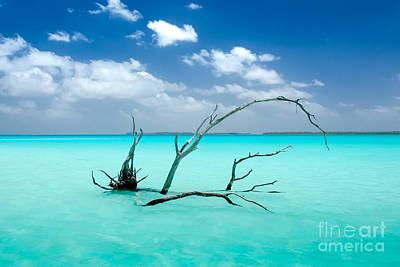 Photograph - French Polynesia Lagoon by Michaela Urban