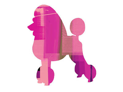French Poodle Print by Naxart Studio