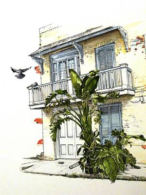 Pigeon Drawing - French Quarter Crib by D K Betts
