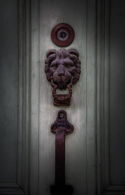 Photograph - French Quarter Lion by Chrystal Mimbs