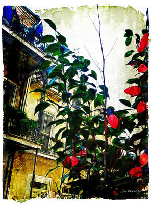 Photograph - French Quarter View by Joan  Minchak