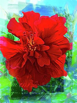 Photograph - French Red by Alice Gipson