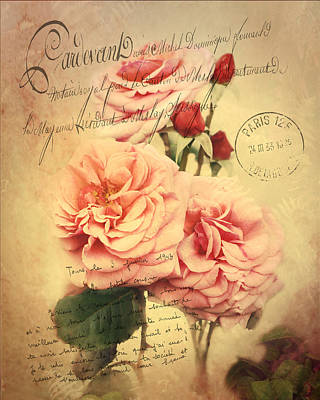Photograph - French Rose Bouquet by TnBackroadsPhotos